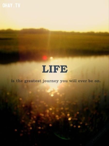 Cuộc sống là hành trình vĩ đại nhất mà bạn từng trải qua,Trích dẫn hay về cuộc sống