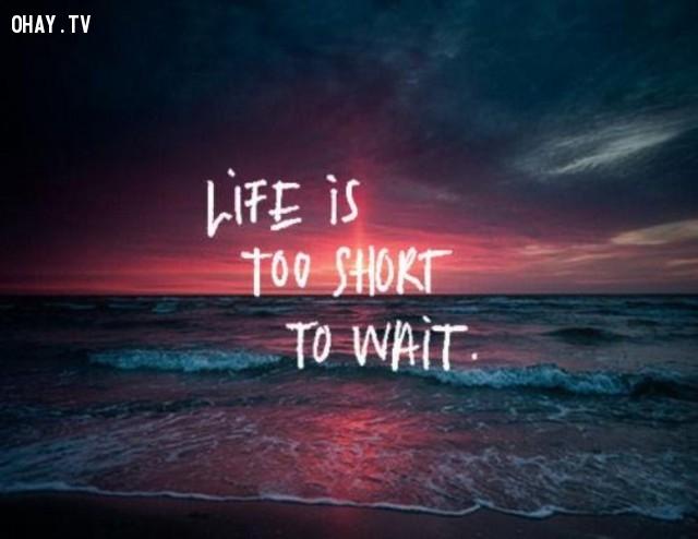 Cuộc sống thật ngắn để chờ đợi,Trích dẫn hay về cuộc sống