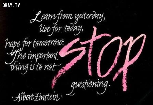 Học hỏi từ ngày hôm qua, sống cho ngày hôm nay, hy vọng cho ngày mai. Điều quan trọng là không ngừng đặt câu hỏi.   Câu nói nổi tiếng của Albert Einstein về cuộc sống,Trích dẫn hay về cuộc sống