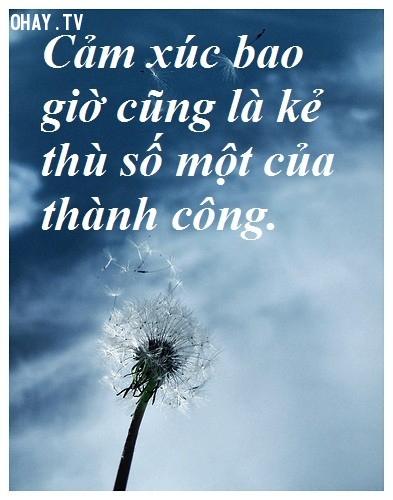 Cảm xúc bao giờ cũng là kẻ thù số một của thành công,câu nói hay,câu nói kinh điển