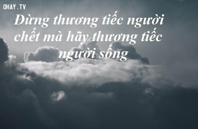 Đừng thương tiếc người chết mà hãy thương tiếc người còn sống - Harry Poter,câu nói hay,câu nói kinh điển