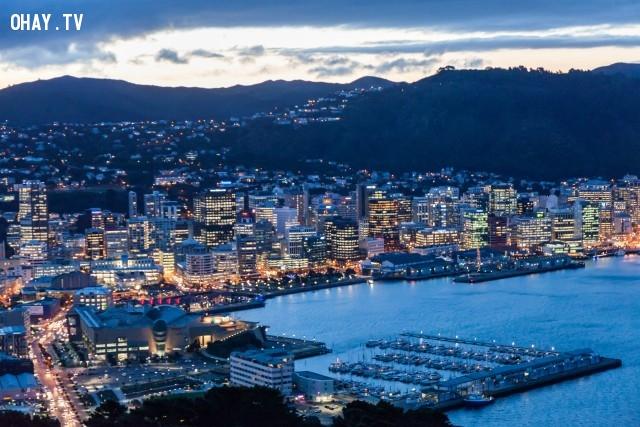 Wellington,du lịch,khám phá,sống