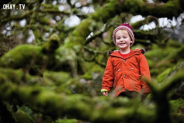 ,Mẹo chụp ảnh,Chụp ảnh trong rừng,Bức ảnh đẹp trong rừng