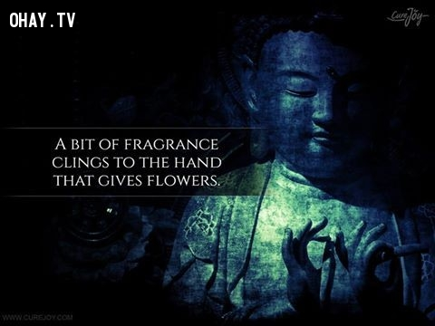 1. Một chút hương thơm bám vào bàn tay vừa tặng hoa.,ngạn ngữ Trung Quốc,suy ngẫm,bài học cuộc sống,ngạn ngữ hay,câu nói hay,danh ngôn