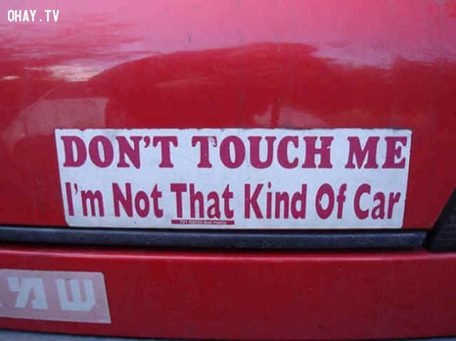 Đừng đụng vào tôi. Tôi không phải là chiếc xe tử tế,ảnh hài hước