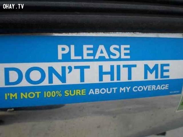 Làm ơn đừng đánh tôi. Tôi không chắc 100% về bảo hiểm của mình,ảnh hài hước