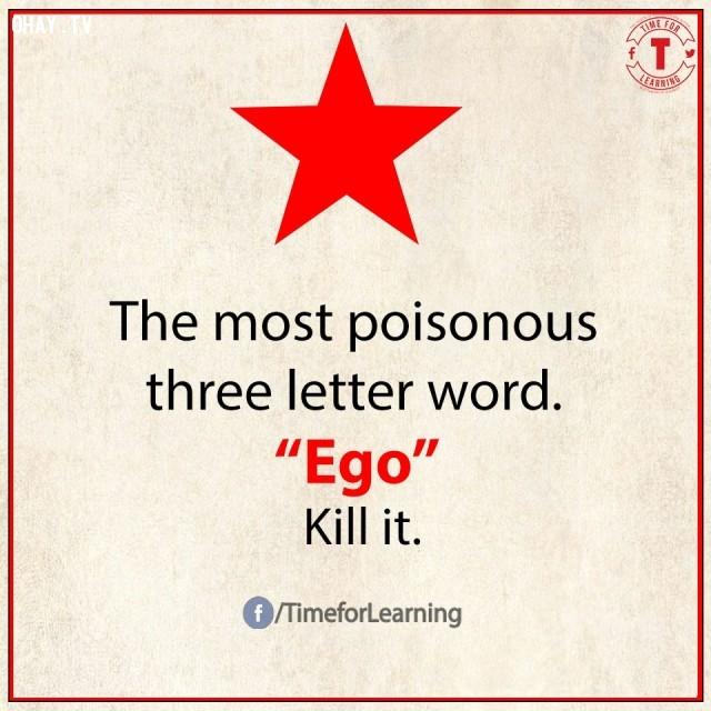 3. Từ độc hại nhất có 3 chữ cái: EGO/cái tôi. Hãy tiêu diệt nó.,từ vựng tiếng Anh,bài học cuộc sống,suy ngẫm,học tiếng Anh,lời ít ý nhiều,khám phá