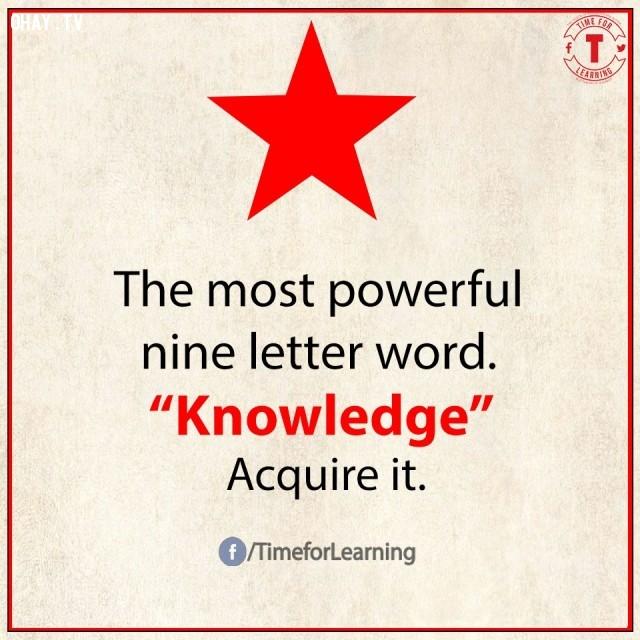 9. Từ có sức mạnh nhất có 9 chữ cái: KNOWLEDGE/tri thức. Hãy kiếm được nó.,từ vựng tiếng Anh,bài học cuộc sống,suy ngẫm,học tiếng Anh,lời ít ý nhiều,khám phá