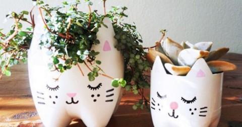 10 ý tưởng trang trí tuyệt đẹp từ chai lọ