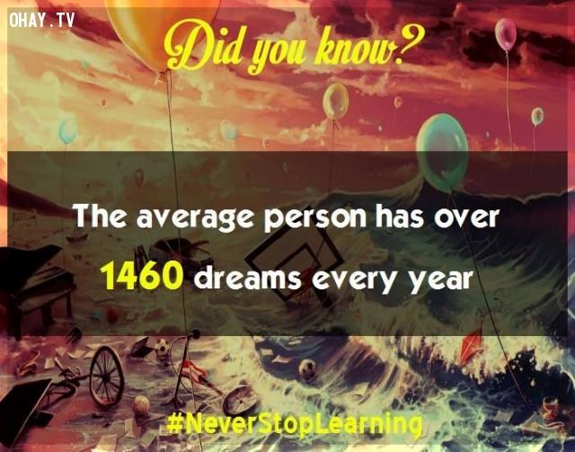 5. Trung bình con người có hơn 1.460 giấc mộng mỗi năm. ,sự thật thú vị,những điều thú vị trong cuộc sống,khám phá,sự thật đáng kinh ngạc,có thể bạn chưa biết
