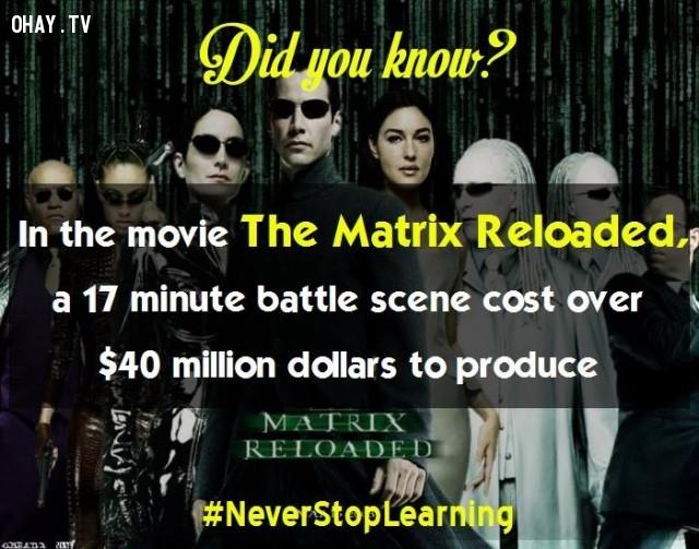 7. Trong phim The Matrix Reloaded, chi phí sản xuất một cảnh chiến đấu dài 17 phút là hơn 40 triệu đô.,sự thật thú vị,những điều thú vị trong cuộc sống,khám phá,sự thật đáng kinh ngạc,có thể bạn chưa biết