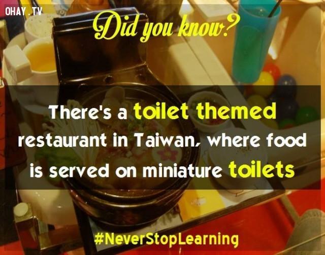 1. Có một nhà hàng được trang trí theo chủ đề toilet tại Đài Loan, nơi thực phẩm được phục vụ trên những vật dụng theo mô hình toilet thu nhỏ.,sự thật thú vị,sự thật đáng kinh ngạc,những điều thú vị trong cuộc sống,có thể bạn chưa biết,khám phá
