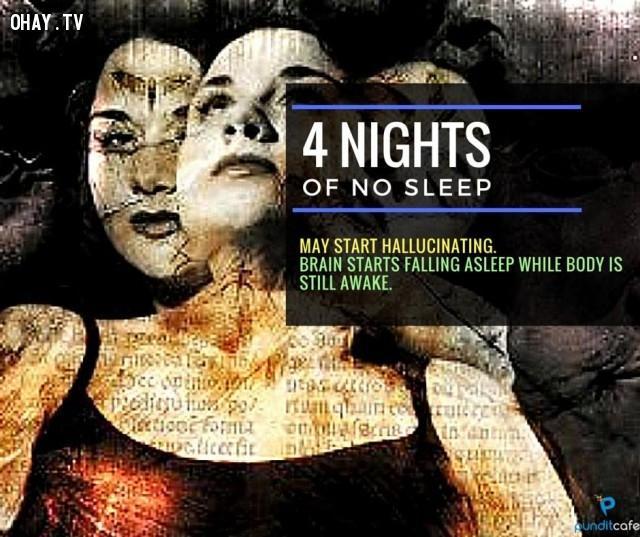4. Bốn ngày không ngủ,thiếu ngủ,chứng mất ngủ,khám phá,mất ngủ có hại gì,thiếu ngủ có tác hại gì