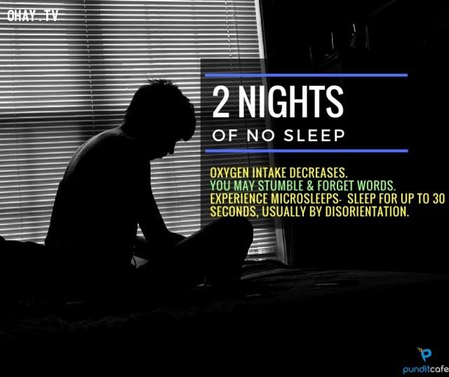 2. Hai ngày không ngủ,thiếu ngủ,chứng mất ngủ,khám phá,mất ngủ có hại gì,thiếu ngủ có tác hại gì