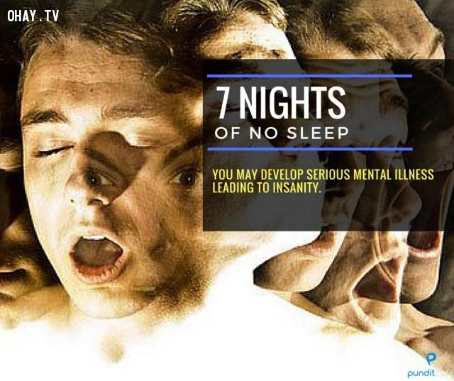 7. Bảy ngày không ngủ,thiếu ngủ,chứng mất ngủ,khám phá,mất ngủ có hại gì,thiếu ngủ có tác hại gì