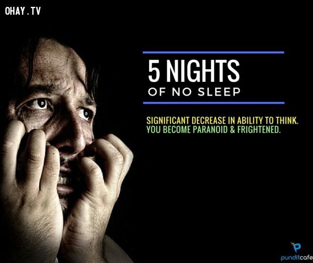 5. Năm ngày không ngủ,thiếu ngủ,chứng mất ngủ,khám phá,mất ngủ có hại gì,thiếu ngủ có tác hại gì