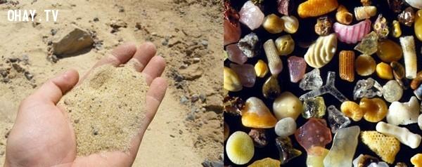 Những hạt cát được phóng to 300 lần,khám phá,nhìn đồ vật dưới kính hiển vi