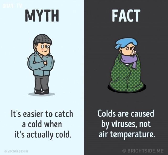 6. Dễ mắc cảm lạnh khi thời tiết thực sự lạnh. Sự thật là cảm lạnh do vi rút gây ra, không phải do khí hậu. ,nhận thức sai lầm,sự thật bạn luôn tin là đúng,khám phá,những điều thú vị trong cuộc sống,sự thật thú vị