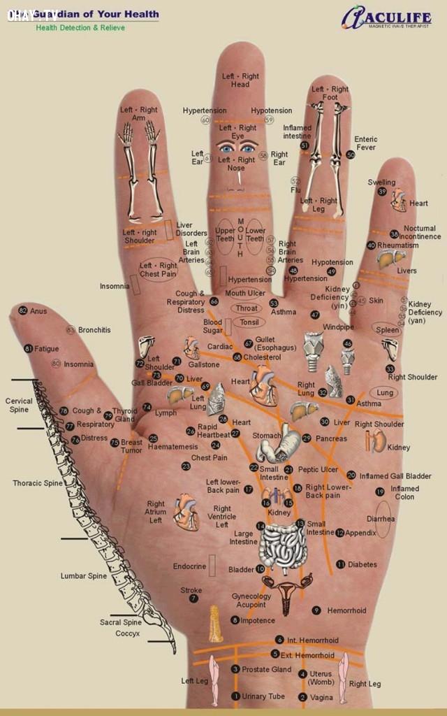Jin Shin Jyutsu,ngón tay,châm cứu,bấm huyệt