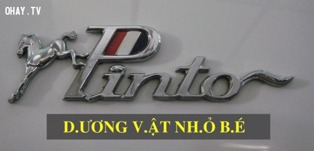 3. Quảng cáo của Công ty Ford Motor,lý do thất bại,ngoại ngữ,nội địa hóa,wording,content marketing,sai lầm trong quảng cáo