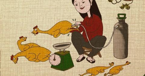 Bộ tranh biếm họa chế tranh Đông Hồ cảnh báo thực phẩm bẩn