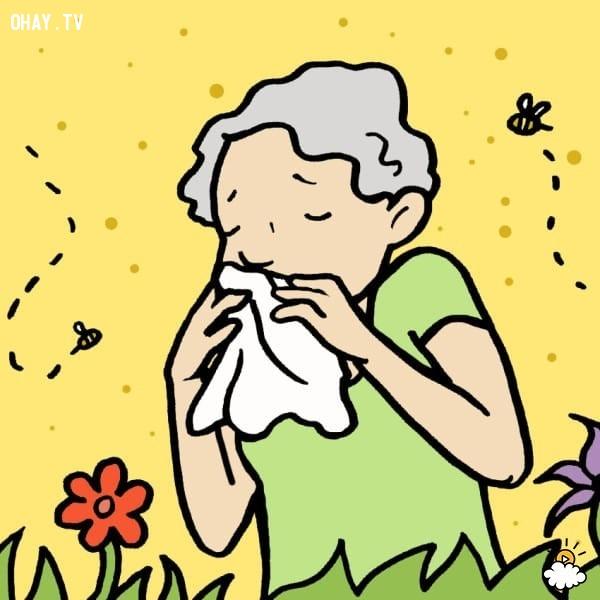 Loại 3: đau mắt đỏ do dị ứng,đau mắt đỏ,chữa đau mắt đỏ tại nhà