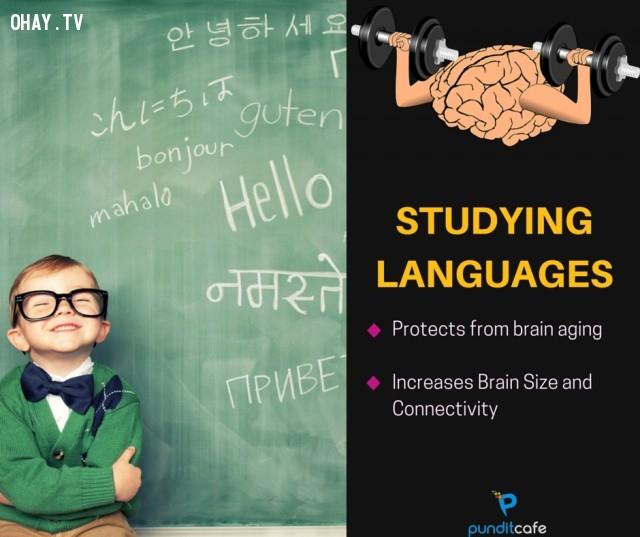3. Học ngôn ngữ mới,sở thích giúp rèn luyện não,rèn luyện não bộ,rèn luyện trí não,luyện tập trí não,luyện tập não bộ