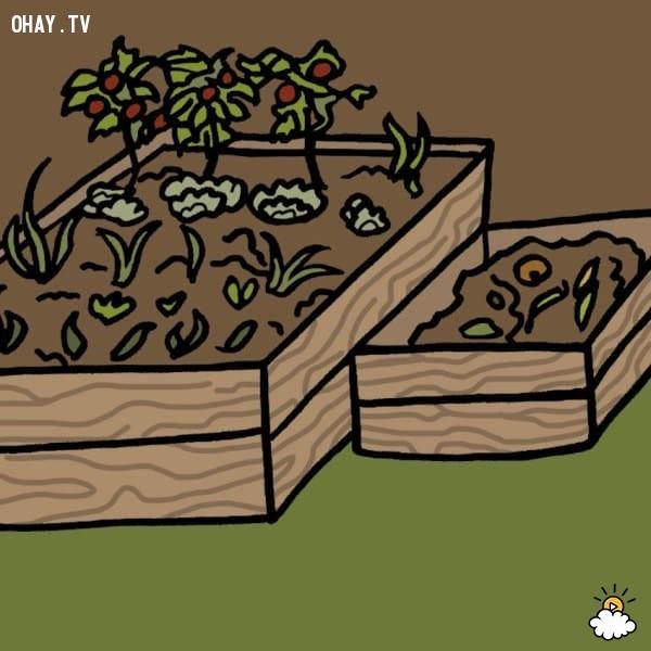 10. Làm phân bón cho cây,mẹo hay,tận dụng túi trà cũ