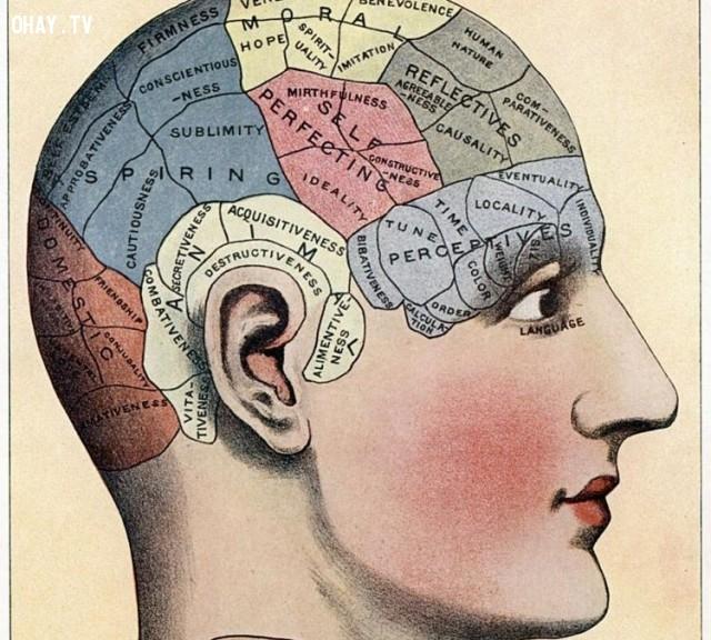 4. Luyện trí nhớ,chờ đợi,mệt mỏi,mẹo hay,tránh đợi lâu,kỹ năng cuộc sống