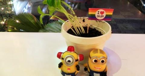 Bạn đã thử ăn 'chậu cây' này tại Sài Gòn chưa?