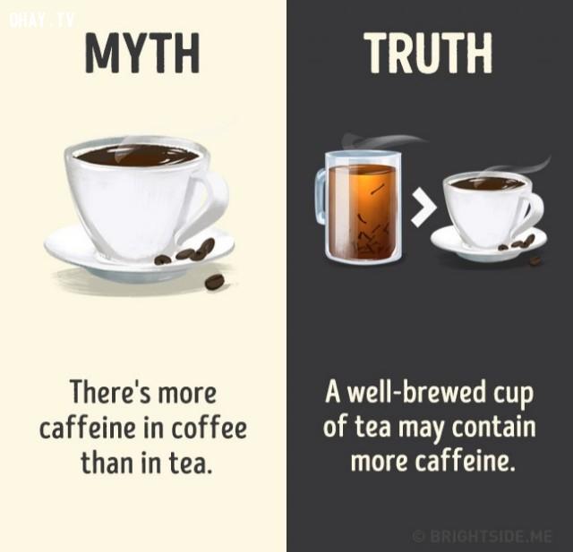 5. Có nhiều caffeine trong cà phê hơn trà. Sự thật là một tách trà được pha có thể chứa nhiều caffeine hơn.,nhận thức sai lầm,các loại thức uống,khám phá,sự thật thú vị,những điều thú vị trong cuộc sống