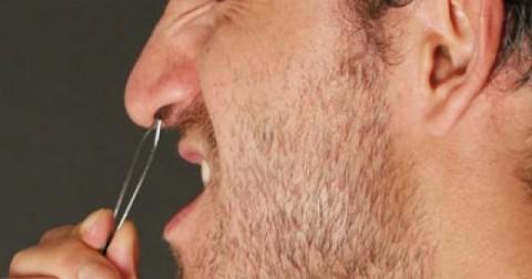 Đây là lí do bạn không nên nhổ lông mũi của mình