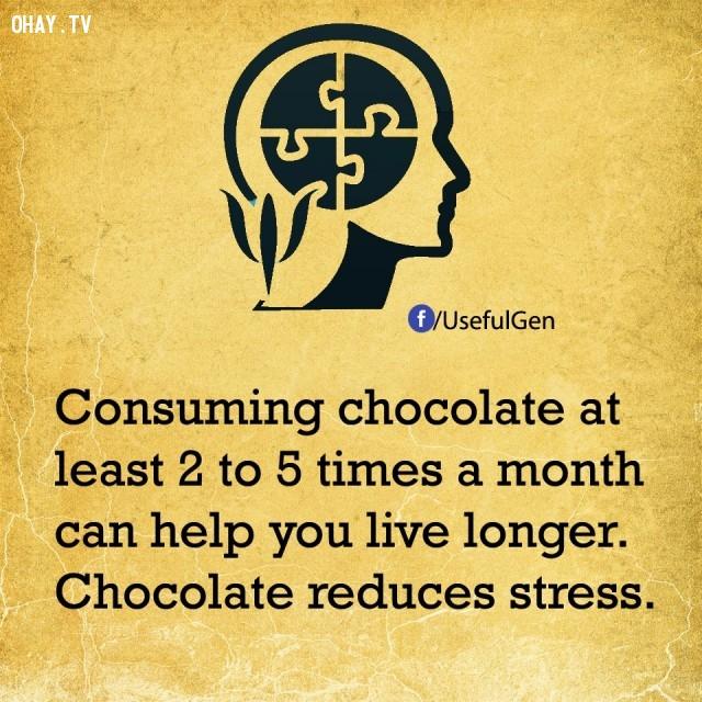 10. Ăn sôcôla ít nhất từ 2 - 5 lần trong một tháng có thể giúp bạn sống lâu hơn. Sôcôla làm giảm căng thẳng.,sự thật tâm lý học,sự thật thú vị,những điều thú vị trong cuộc sống,khám phá,có thể bạn chưa biết