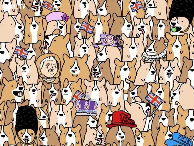 3. Hãy tìm nữ hoàng Elizabeth II giữa những chú chó.,trắc nghiệm kiểm tra thị giác,trắc nghiệm kiểm tra thị lực,thị giác,thị lực,trắc nghiệm vui,thử tài tinh mắt