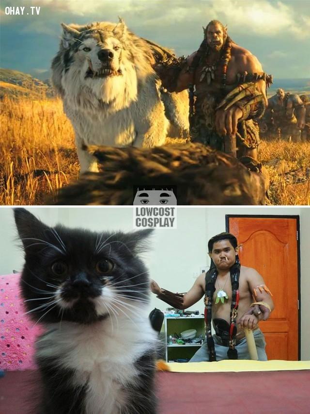 #1 Durotan (world Of Warcraft),ảnh hài,Cosplay hài hước,cosplay rẻ tiền,cười vỡ mồm,nghệ thuật cosplay