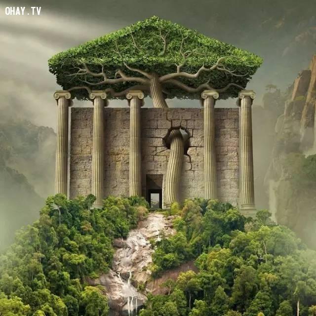 Thiên nhiên mạnh hơn chúng ta tưởng,thực tế ám ảnh,cuộc sống ngày nay,suy ngẫm,thực trạng cuộc sống,ảnh minh họa