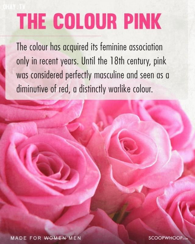 3. Màu hồng,phụ nữ,nam giới,nguồn gốc sự vật,vật dụng của phụ nữ