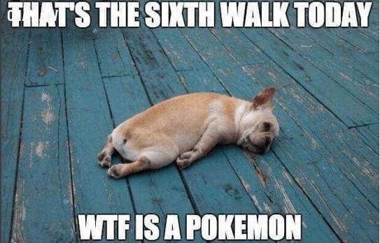 Thật là độc ác mà!,ảnh hài hước,luyện thú,khoảnh khắc Pokémon GO,chơi game,chơi pokemon go