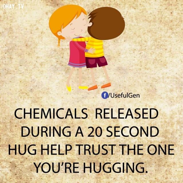 8. Các chất hóa học được phóng thích trong một cái ôm kéo dài 20 giây giúp bạn tin tưởng người mình đang ôm.,sự thật tâm lý học,sự thật thú vị,những điều thú vị trong cuộc sống,khám phá,có thể bạn chưa biết