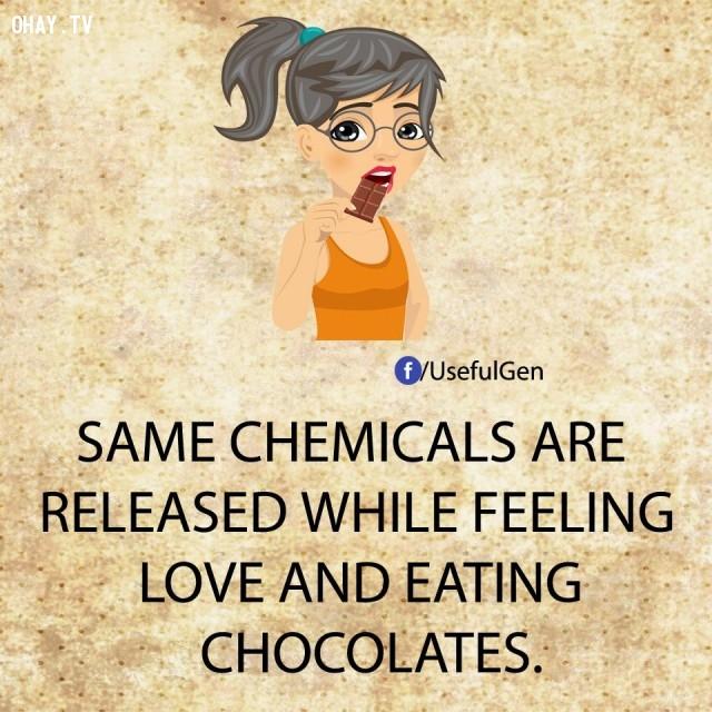 6. Các hóa chất tương tự được phóng thích trong lúc bạn cảm nhận tình yêu và ăn sô-cô-la.,sự thật tâm lý học,sự thật thú vị,những điều thú vị trong cuộc sống,khám phá,có thể bạn chưa biết