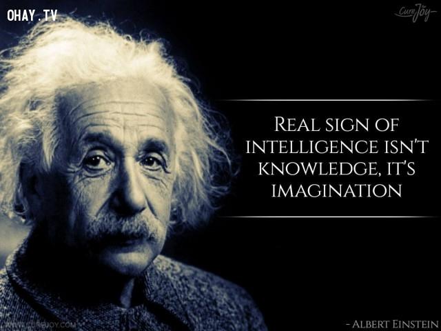 4. Dấu hiệu thực sự của sự thông minh không phải là kiến thức mà là trí tưởng tượng.,câu nói hay,trích dẫn hay,những triết gia nổi tiếng thế giới,suy ngẫm,bài học cuộc sống