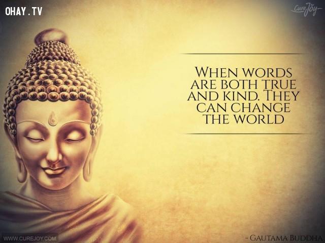 6. Khi ngôn từ đúng đắn và rộng lượng, nó có thể thay đổi thế giới.,câu nói hay,trích dẫn hay,những triết gia nổi tiếng thế giới,suy ngẫm,bài học cuộc sống