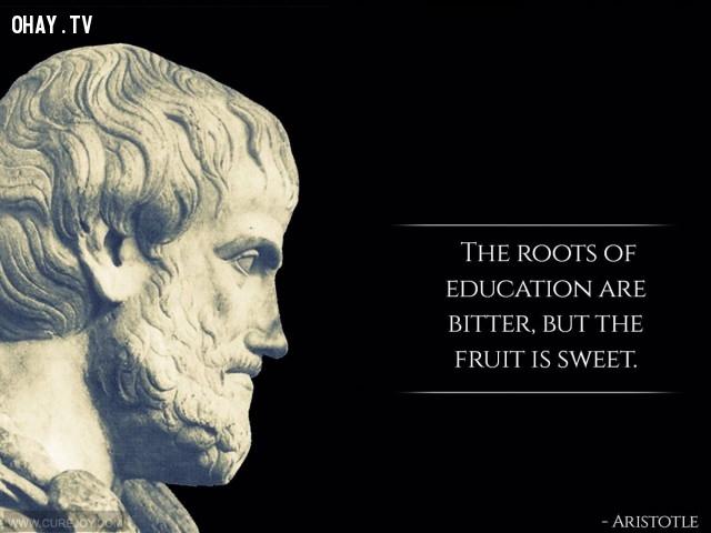 3. Cái rễ của học hành thì đắng cay nhưng quả của nó thì ngọt ngào.,câu nói hay,trích dẫn hay,những triết gia nổi tiếng thế giới,suy ngẫm,bài học cuộc sống