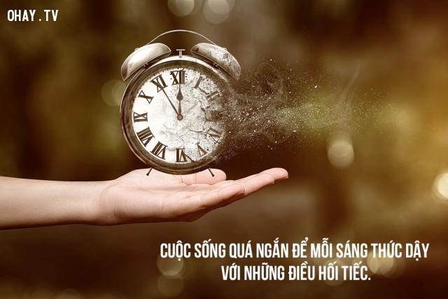 7. Cuộc sống quá ngắn để mỗi sáng thức dậy với những điều hối tiếc.,câu nói giúp bạn vượt qua tâm trạng tồi tệ,tự vực dậy chính mình,câu nói động viên tinh thần,câu nói khích lệ tinh thần,suy ngẫm