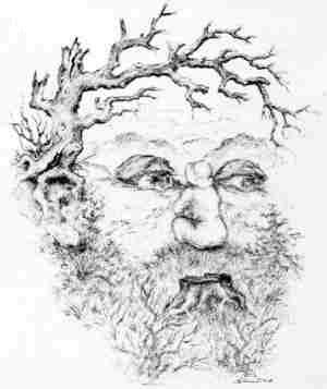 Linh hồn của gỗ,ảo giác,khuôn mặt,bức ảnh