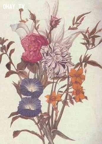Hoa và khuôn mặt ,ảo giác,khuôn mặt,bức ảnh