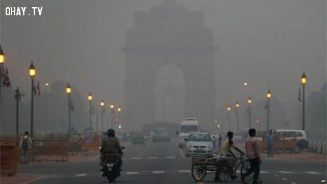 ,những điều thú vị trong cuộc sống,suy ngẫm,môi trường ô nhiễm ở Ấn Độ,sáng tạo,kỷ lục thế giới