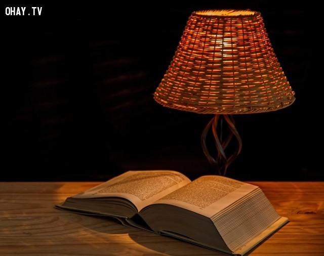 5 cách giúp bạn đọc yêu sách hơn,đọc sách,mọt sách,yêu sách hơn