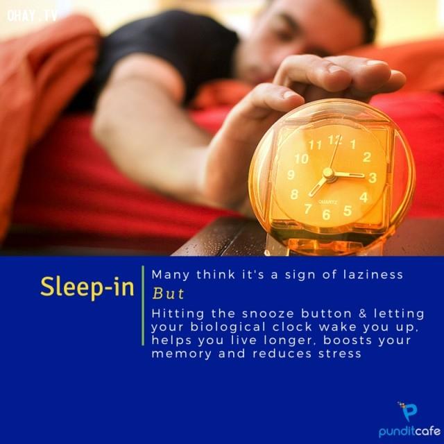 7. Ngủ nướng,thói quen xấu,khám phá,thói quen xấu có lợi,tăng tốc độ trao đổi chất