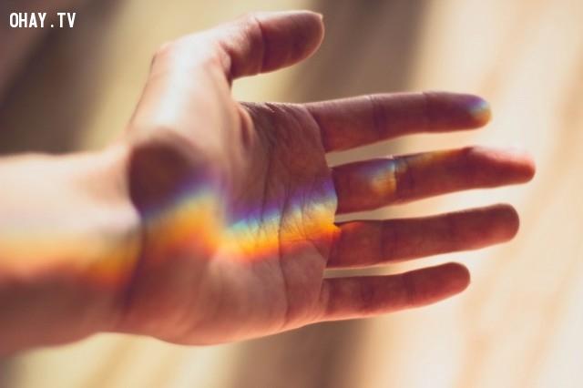 Cảm nhận ánh sáng lọt qua kẽ tay,khoảnh khắc quý giá của cuộc sống,suy ngẫm,hãy đặt điện thoại xuống,cảm nhận thế giới xung quanh,mặt trái của điện thoại